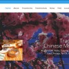 iMedicine Web Design Acupuncture in Coral Springs